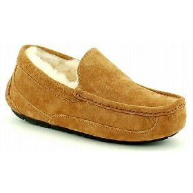 5775/CHE UGG ASCOT SUEDE